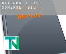Bath and North East Somerset  bill