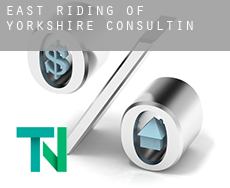 East Riding of Yorkshire  consulting