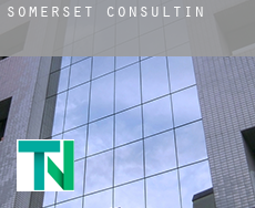 Somerset  consulting