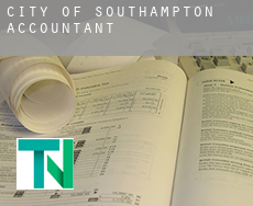City of Southampton  accountants
