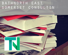 Bath and North East Somerset  consulting