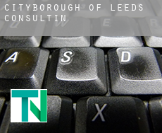 Leeds (City and Borough)  consulting