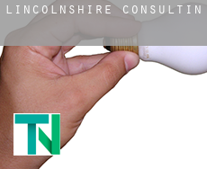 Lincolnshire  consulting