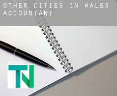 Other cities in Wales  accountants