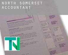 North Somerset  accountants